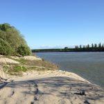 Il territorio del GAL Terre del Po è invitato all'Assemblea Pubblica online